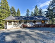 6219  Green Leaf, Foresthill image