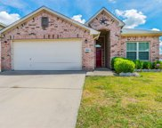10061 Pronghorn Lane, Fort Worth image