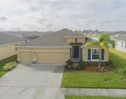 15102 Trinity Fall Way, Bradenton image