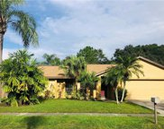 6525 Seafairer Drive, Tampa image