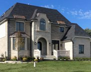 18460 Buckberry Lane, Mokena image