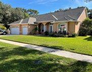 14909 Evershine Street, Tampa image