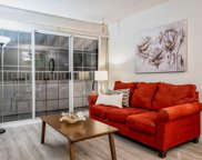 707 Eighth Street Unit 308, New Westminster image