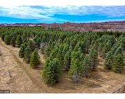 1550 Majestic Pines Trail, Afton image