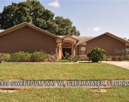 2939 Sweetgum Way W, Clearwater image