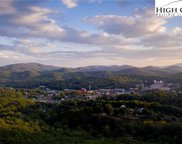 Lot 53 Lady Slipper  Lane, Boone image