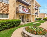 6815 N Olmsted Avenue Unit #102, Chicago image