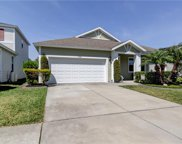 11508 Balintore Drive, Riverview image