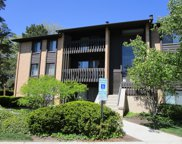 6104 Knoll Valley Drive Unit #203, Willowbrook image