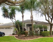 10238 Timberland Point Drive, Tampa image