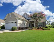 24111 Waxwing  Court, Indian Land image