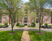 440 West Mahogany Court Unit 606, Palatine image