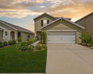 12110 Fawn Brindle Street, Riverview image
