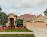 14927 Bowfin Terrace, Lakewood Ranch image