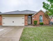 5720 Moon Flower Court, Fort Worth image