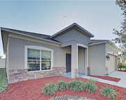10635 Pictorial Park Drive, Tampa image