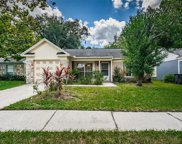 8519 Misty River Court, Tampa image