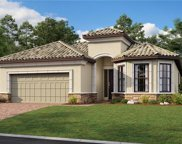 8664 Dilillo Ct, Naples image