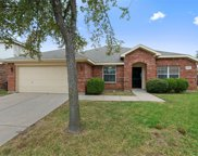 8532 Santa Ana Drive, Fort Worth image