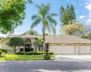 5497 Oakridge Drive, Palm Harbor image