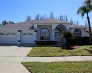 8208 Silver Mist Place, Trinity image