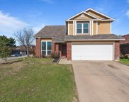 8701 Brushy Creek Trail, Fort Worth image