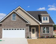 265 Endurance Ct, Lot 70, Smyrna image