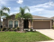 10859 Cabbage Tree Loop, Orlando image