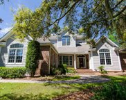 146 Sandy Meadow Loop, Pawleys Island image
