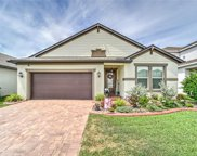 10532 Cardera Drive, Riverview image