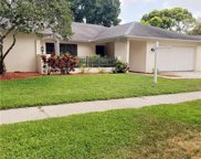 960 Chatham Way, Palm Harbor image