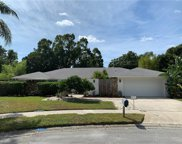 25 Baywood Court, Palm Harbor image