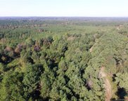 TBD Stanback Ferry  Road, Lilesville image