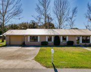 125 PALM TRL, East Palatka image
