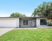 4108 Hollow Hill Drive, Tampa image