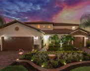 10979 Longwing  Drive, Fort Myers image