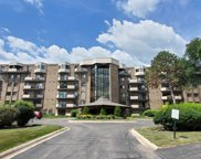 1243 East Baldwin Lane Unit 609, Palatine image