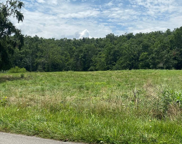 47.30 AC Brotherton Mountain Rd, Cookeville image