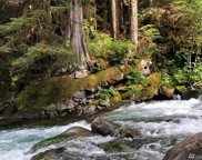 0 xx Money Creek Rd, Skykomish image
