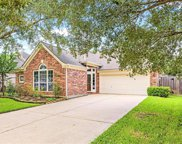 21506 Willow Glade Drive, Katy image