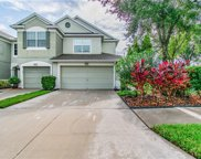 10284 Post Harvest Drive, Riverview image