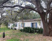 11427 Buster Bean Drive, Seffner image