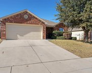 14213 Zamora Lane, Fort Worth image
