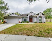 9646 Greenbank Drive, Riverview image