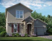 15783 Sweet Lemon Drive, Winter Garden image