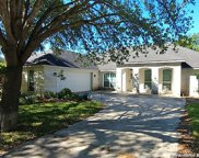 4313 Golden Oak, Schertz image