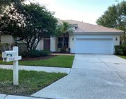 9202 Meadow Lane Court, Tampa image