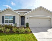 3814 Willow Walk Drive, Palmetto image