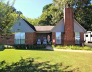 7629 Coral Meadows Drive, Southaven image