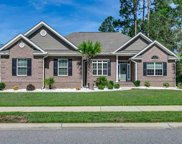 1864 Wood Stork Dr., Conway image